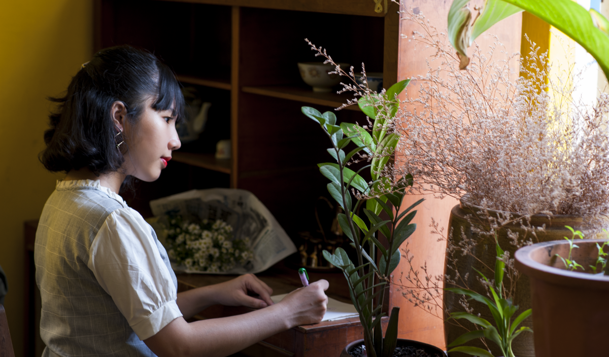 How to Care for Indoor Plants During Warmer Weather | Dengarden