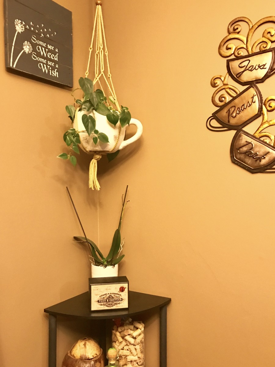 Plants are still a great way to help air quality in your home and add some beauty at the same time.
