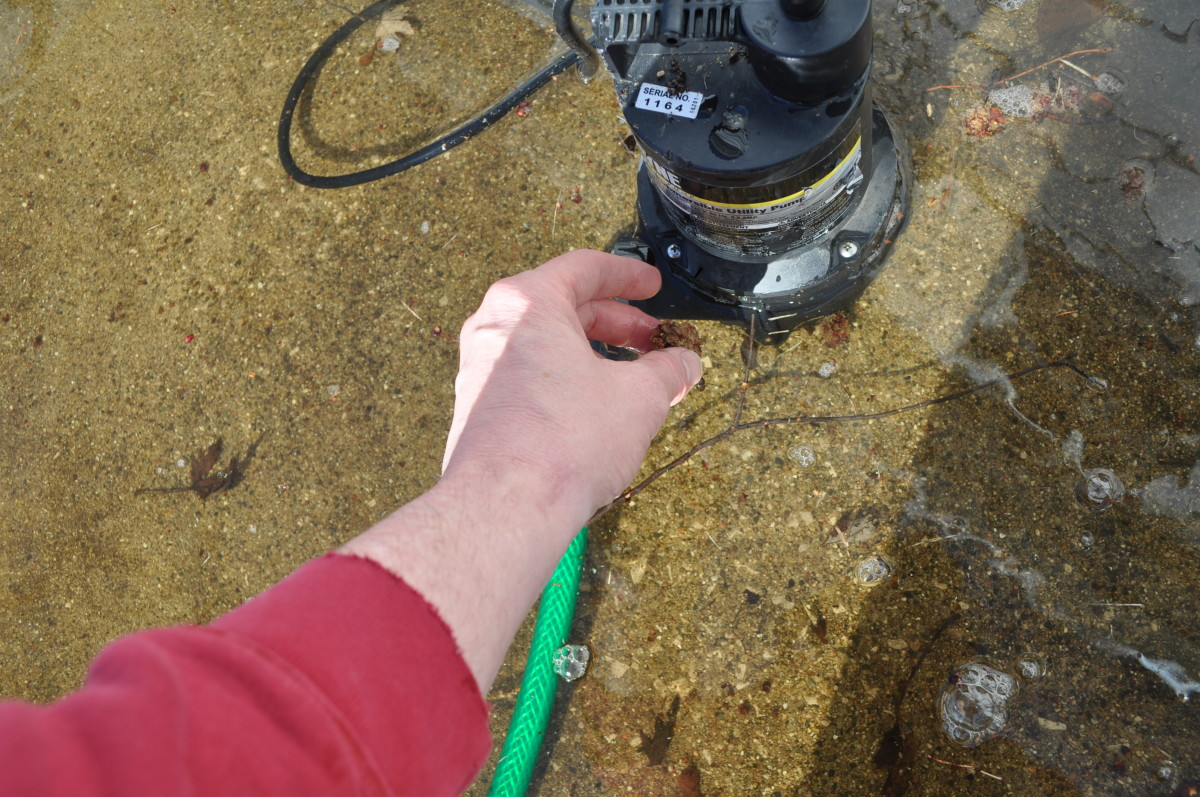 Here I remove small twigs and leaves from the base of the pump.  The pump has a strong vacuum feature that occasionally pulls in debris ,slowing or stopping water flow.