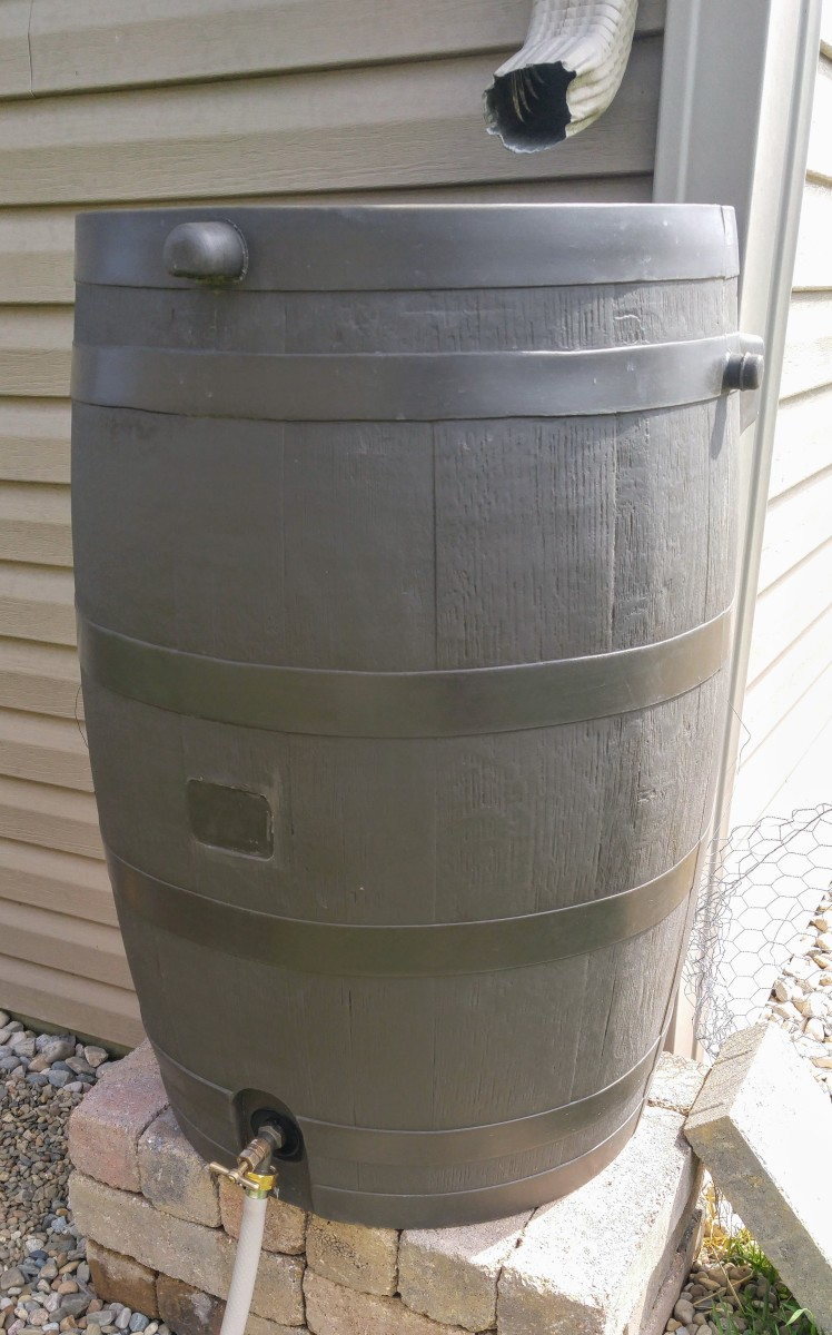 Using a rain barrel with a flat back allows it to sit closer to your home. It's a great feature for a small scale homestead.