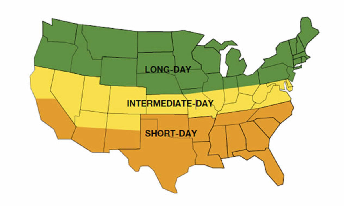 Daylight hours for vegetative growth in Ohio