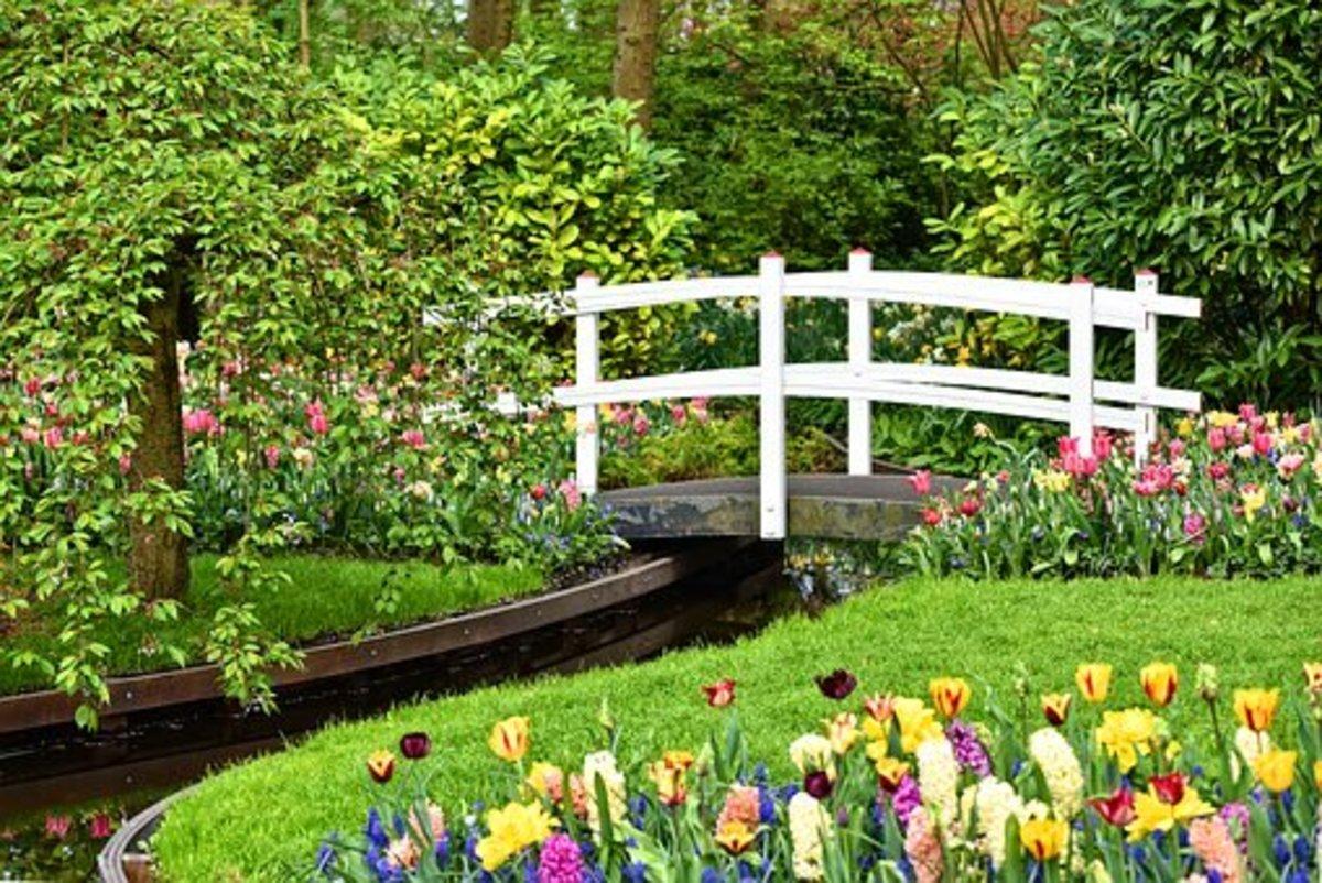 An idyllic garden scene