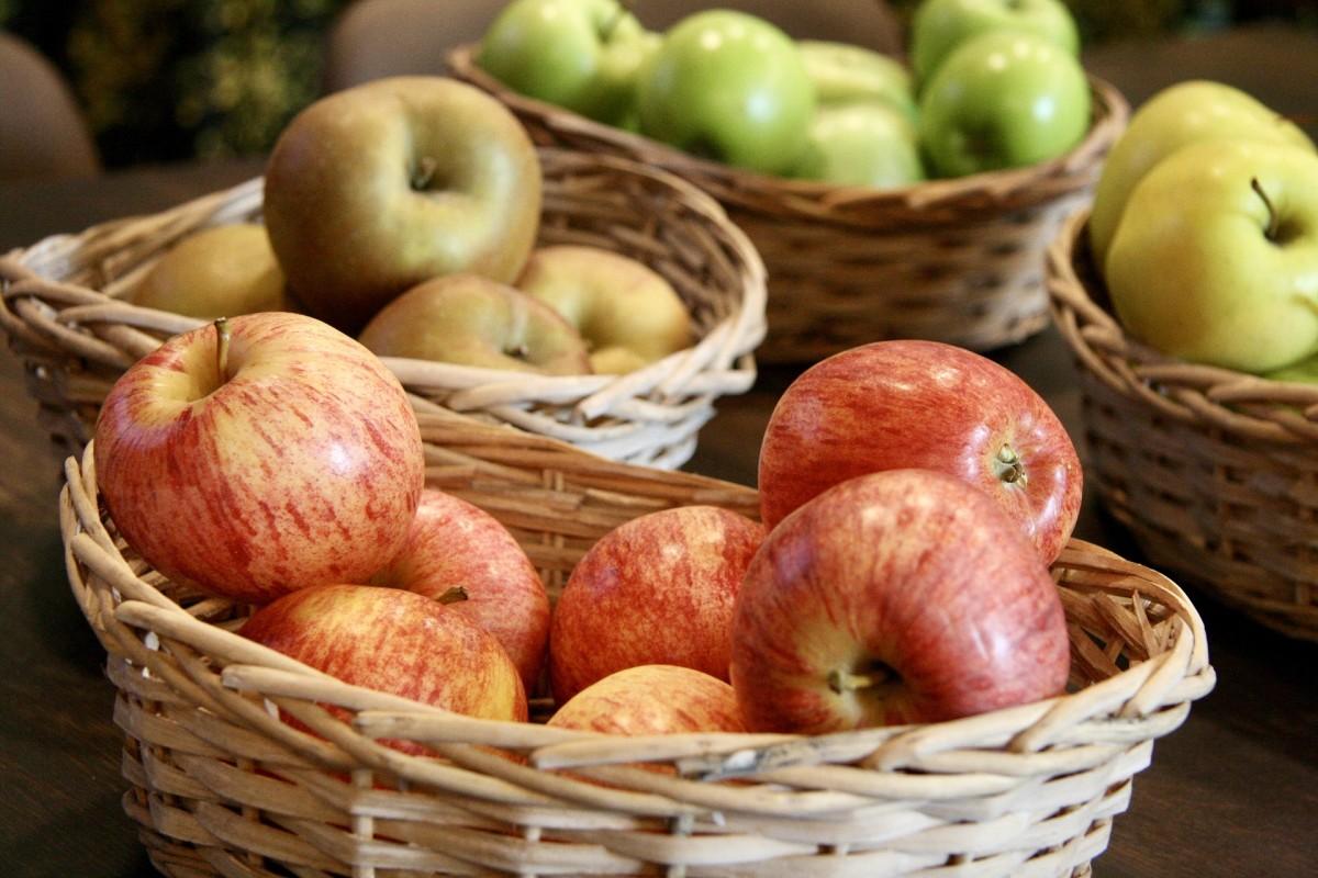 Dwarf trees produce regular-sized fruit.
