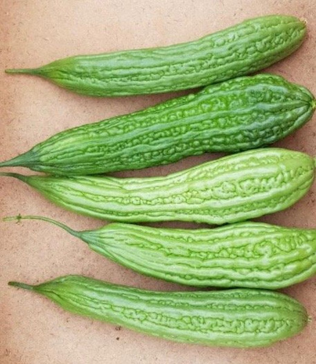 Ampalaya, or bitter gourd, can be cooked into delicious dishes or made into a tea. It has numerous vitamins and health benefits.