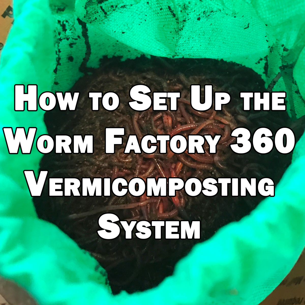 How to set up your new Worm Factory 360 vermicomposting stacking tray system.