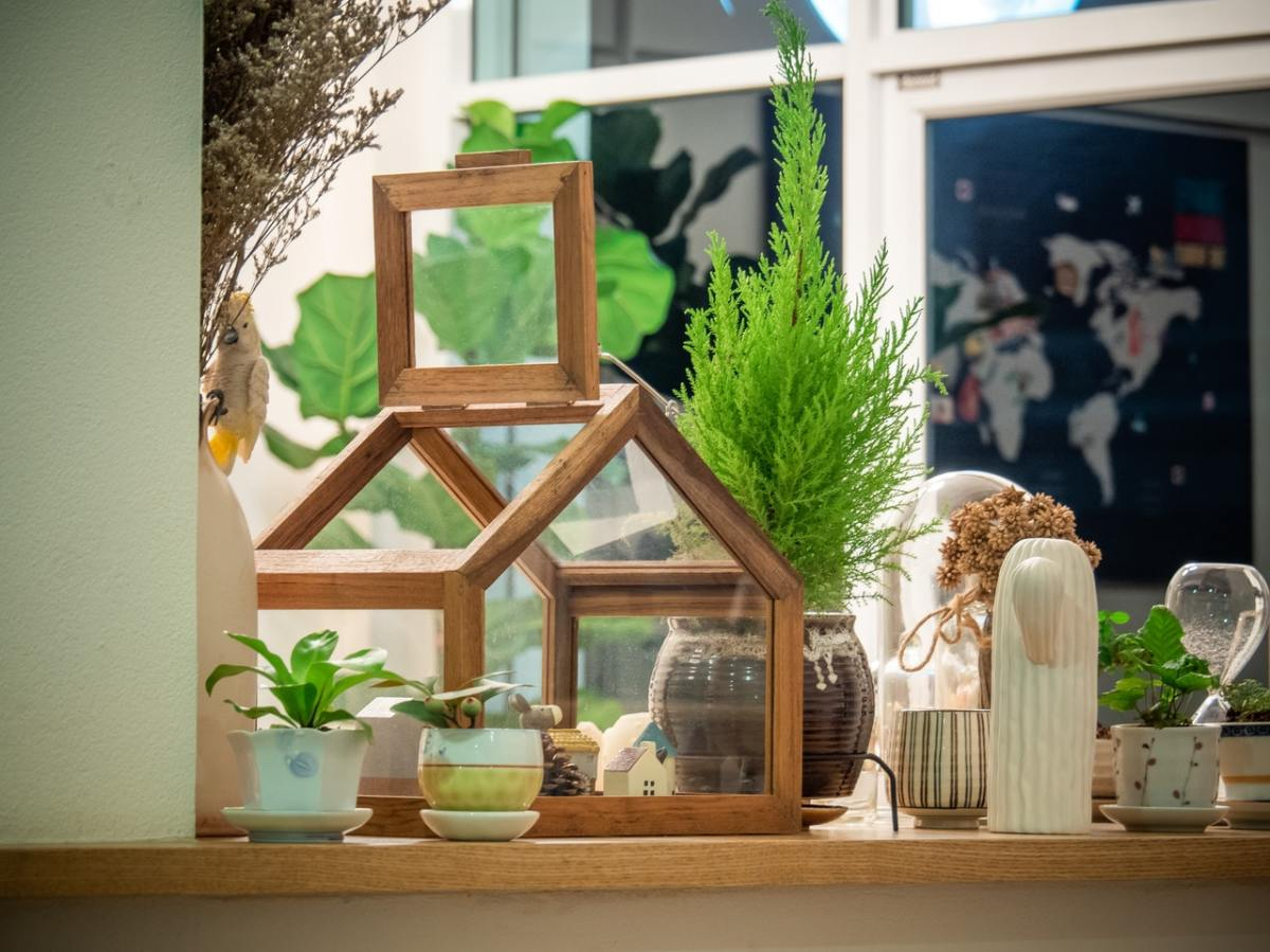Houseplants can help keep the air in your home fresh and clean!