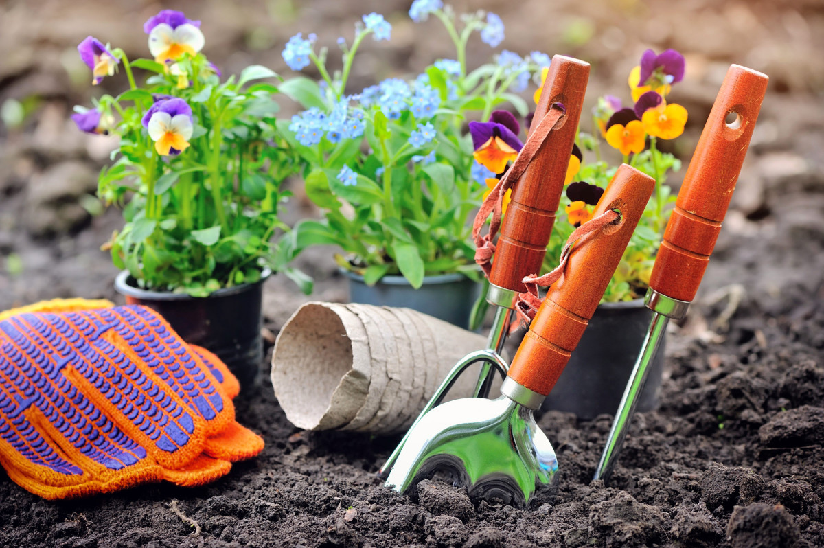 5 Tips for Gardening on a Budget