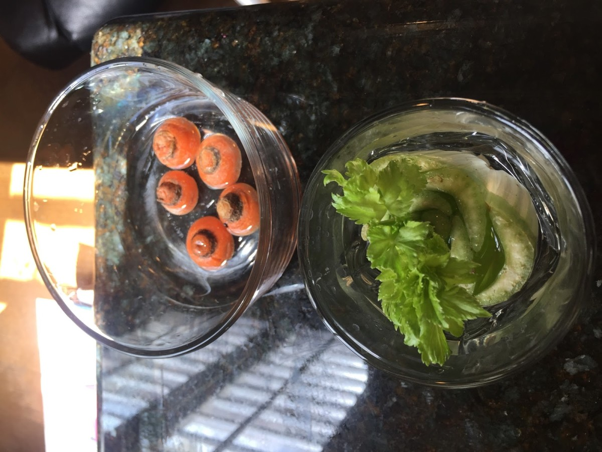 Carrots and celery.
