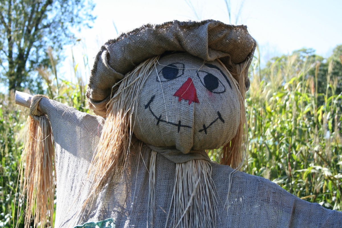 Raggedy-Ann style scarecrow face.