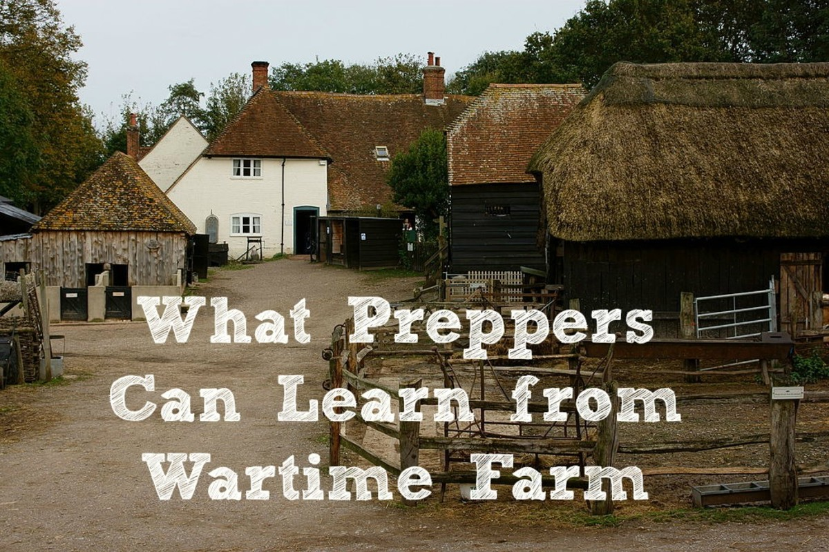 What Preppers Can Learn From the BBC Series Wartime Farm