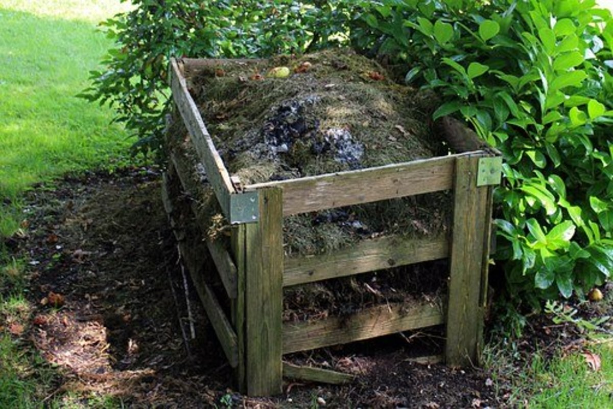 8-ways-to-make-your-own-fertilizer-and-save-a-ton-of-money