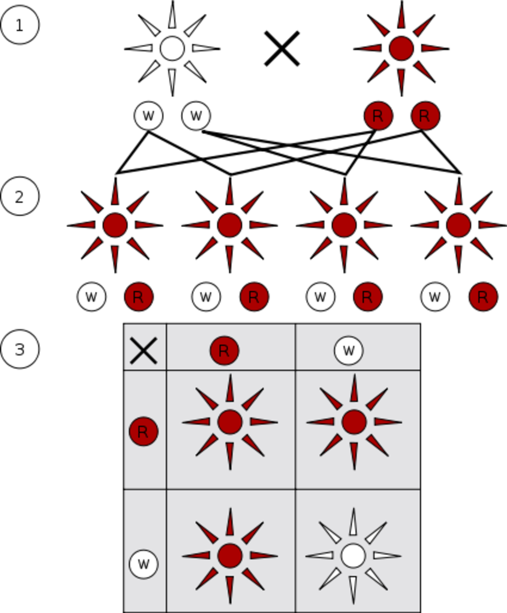 The science of hybridization with red being the dominant color and white the recessive color in this example.