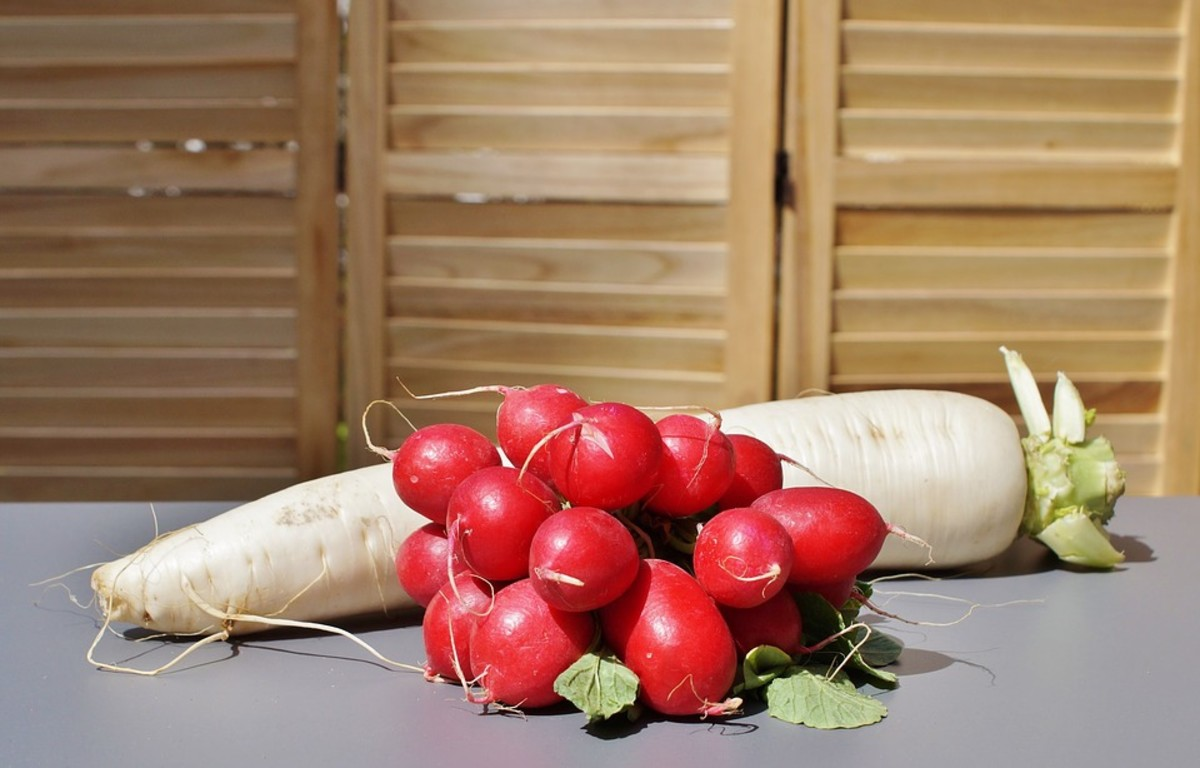 Radishes can be enjoyed in as little as three weeks after planting them indoors.