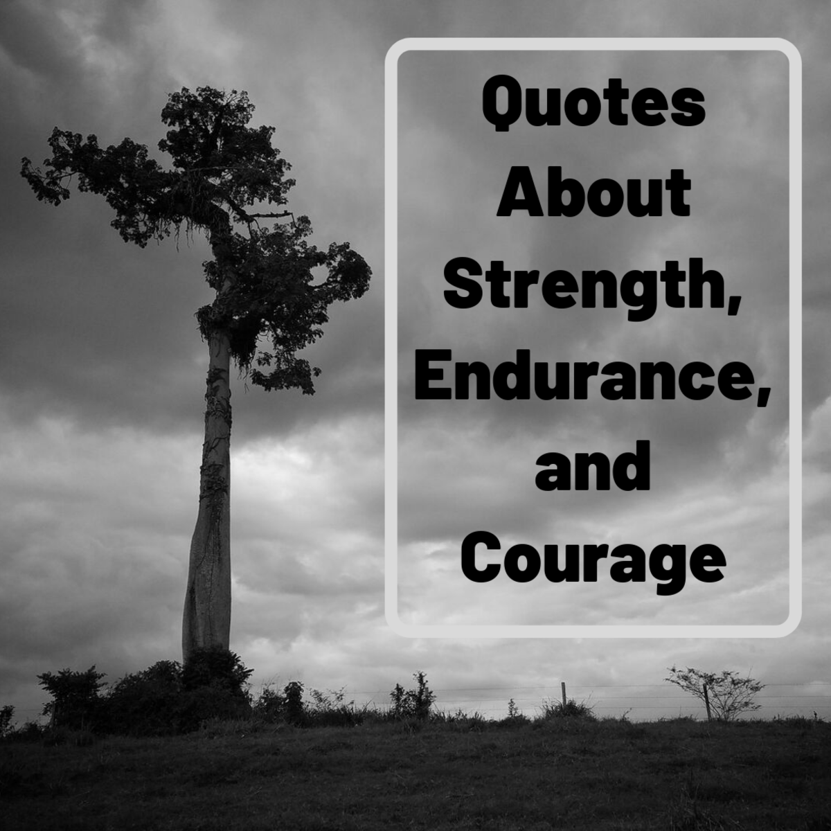 My Favorite Quotes About Strength, Courage, and Not Giving Up