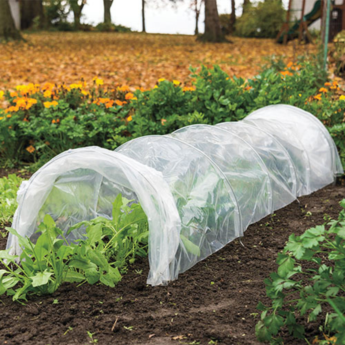 A grow tunnel creates the perfect greenhouse environment for your plants when they need it.