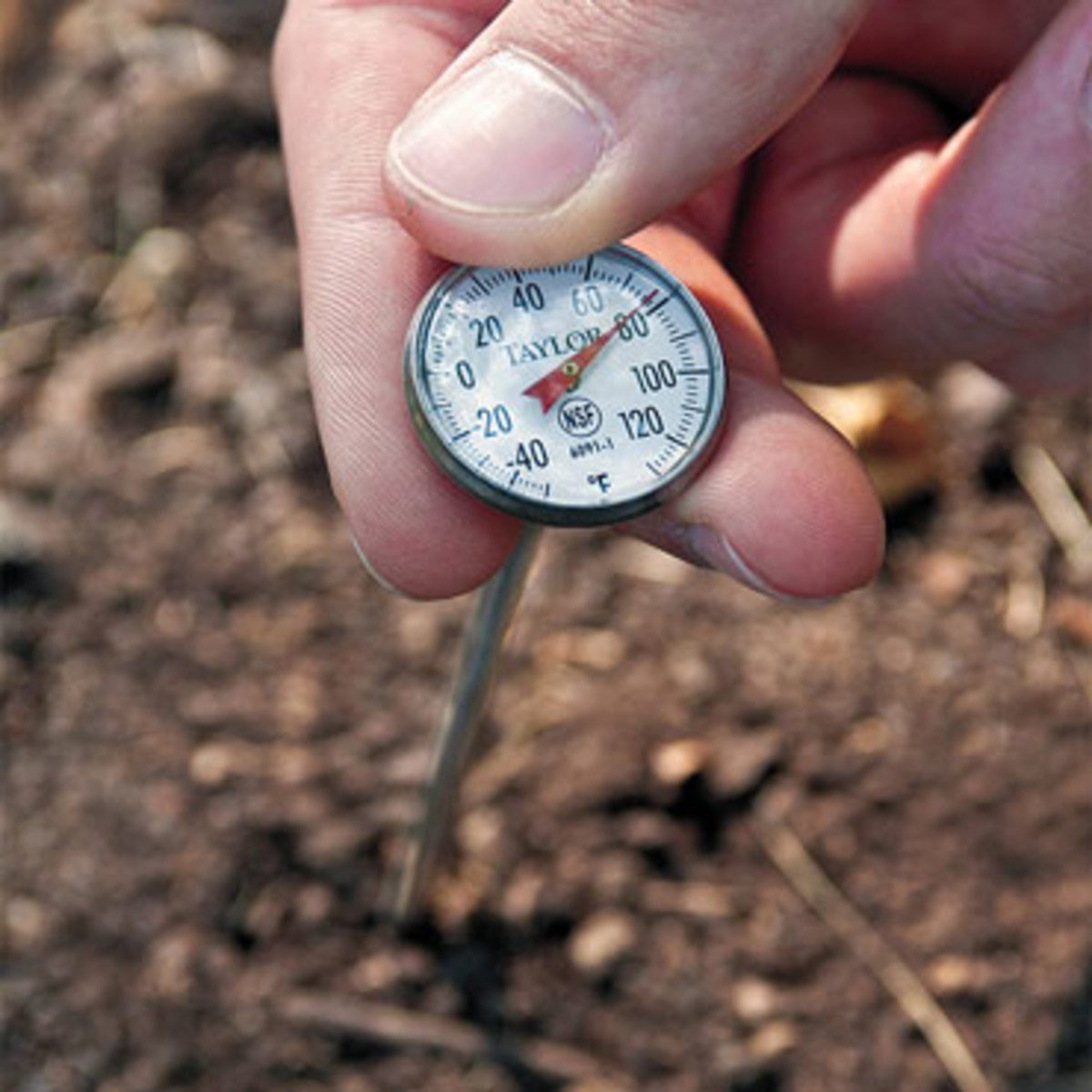 Cold soil is the enemy of most plants.  You can purchase a very inexpensive soil thermometer and save yourself many headaches that come from planting too early before the soil reaches the appropriate temperature.