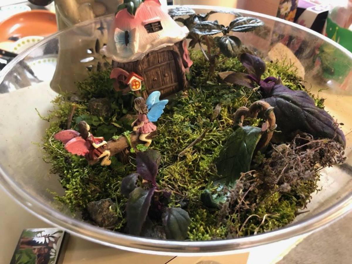 Add greenery to your scenery—moss and grass will help make your terrarium look more natural.