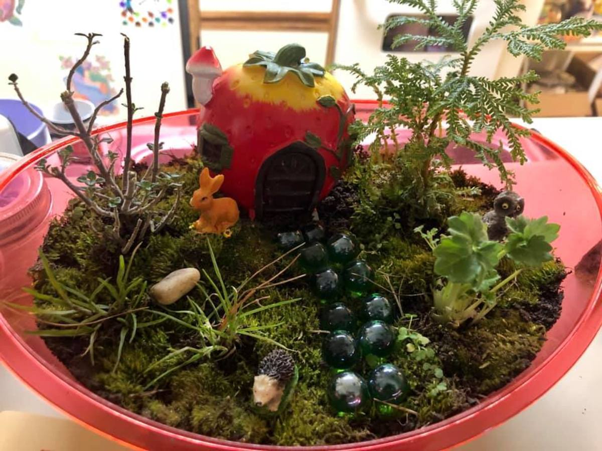 Add Color! You don't always have to have a clear container; you might want to play around with the way you use color in your terrarium. This Strawberry Terrarium is a great example of that.