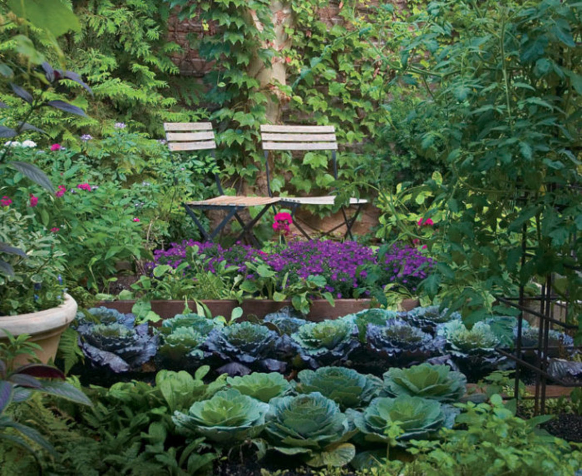 5 Ways to Enrich Your Garden Soil