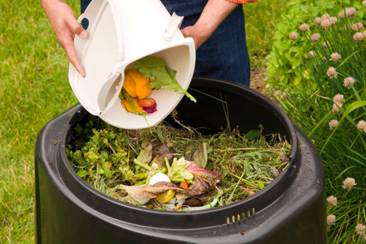 Composting is a great way to recycle food scraps instead of putting them into the trash.