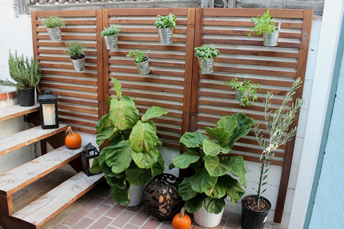 Wall planters draw your eye up to create visual interest in a tiny outdoor space.