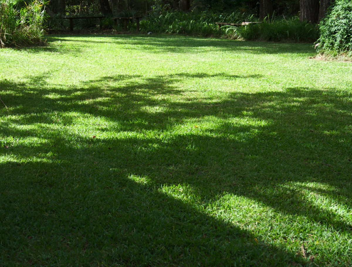Regular and proper application of a lawn pesticide can prevent most pest damage.