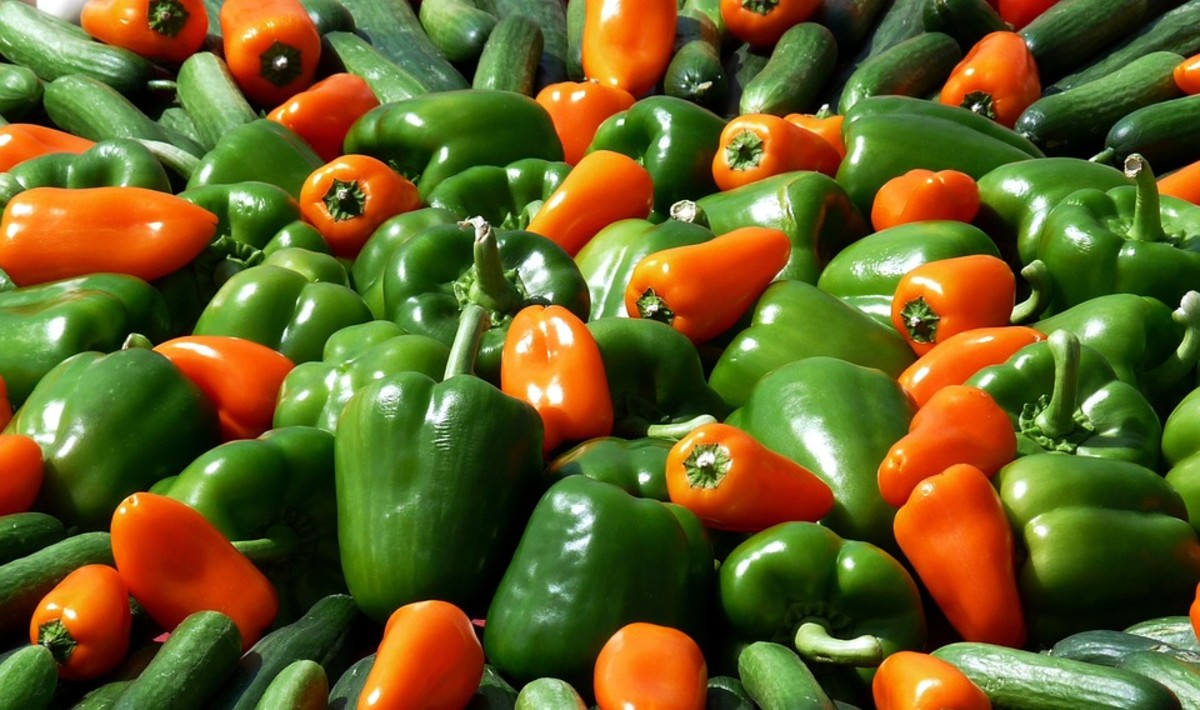 How to Grow Any Kind of Pepper