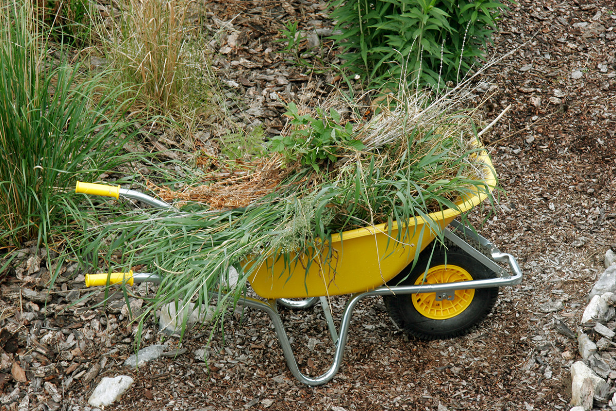 Clean up the landscape around your garden beds so it looks tidy.