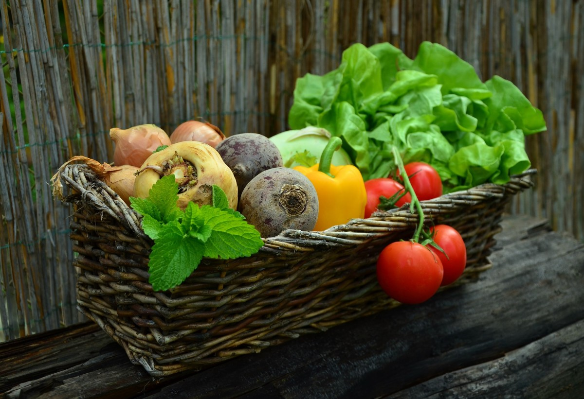 Is your food optimized by being grown in properly fertilized soil?
