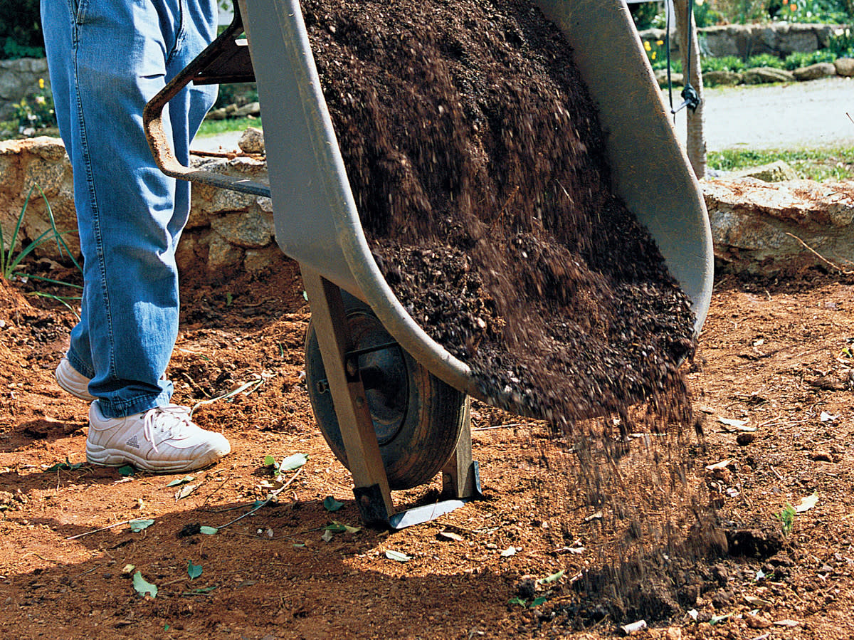Add plenty of nutrients and add good soil to break up hard clay.