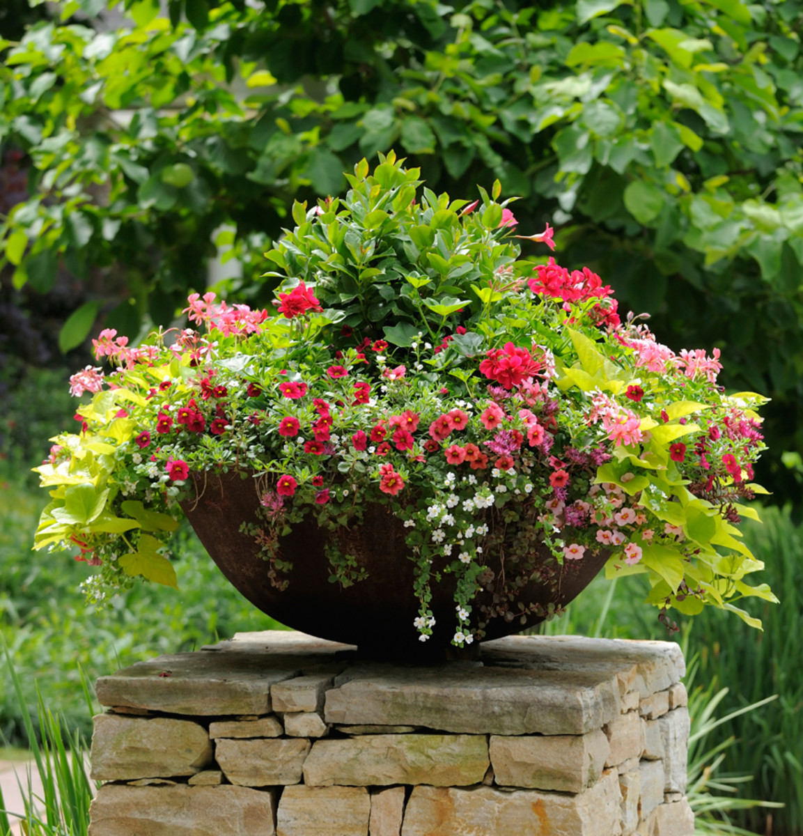 The Advantages of Container Gardening