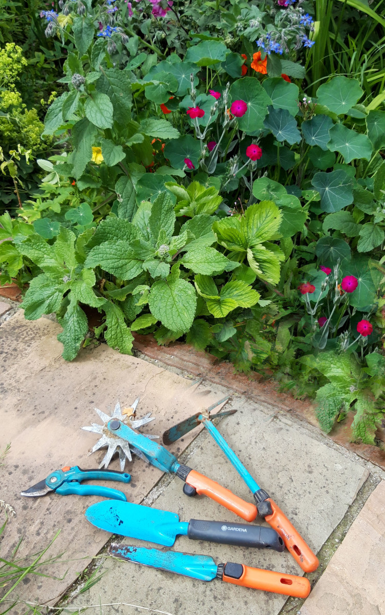These are my best gardening tools.
