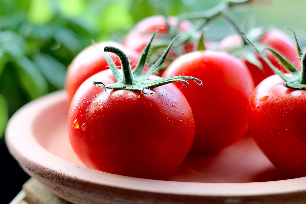 To grow tomatoes bursting with flavour, use organic companion planting techniques—and this article will show you how.