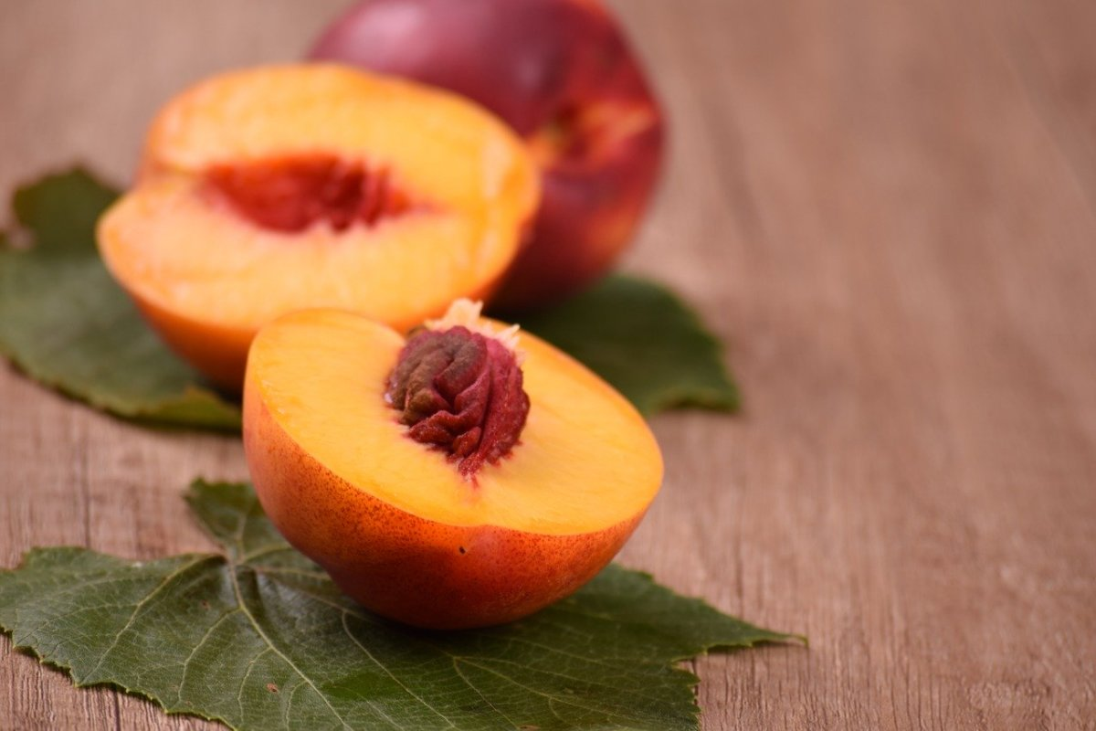 Why You Should Plant a Nectarine Tree Today