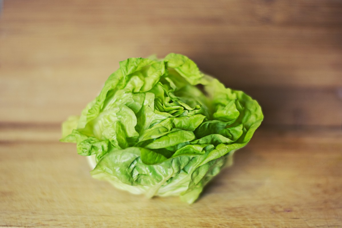 Freshly picked home-grown lettuce really does taste much better than its store-bought varieties.