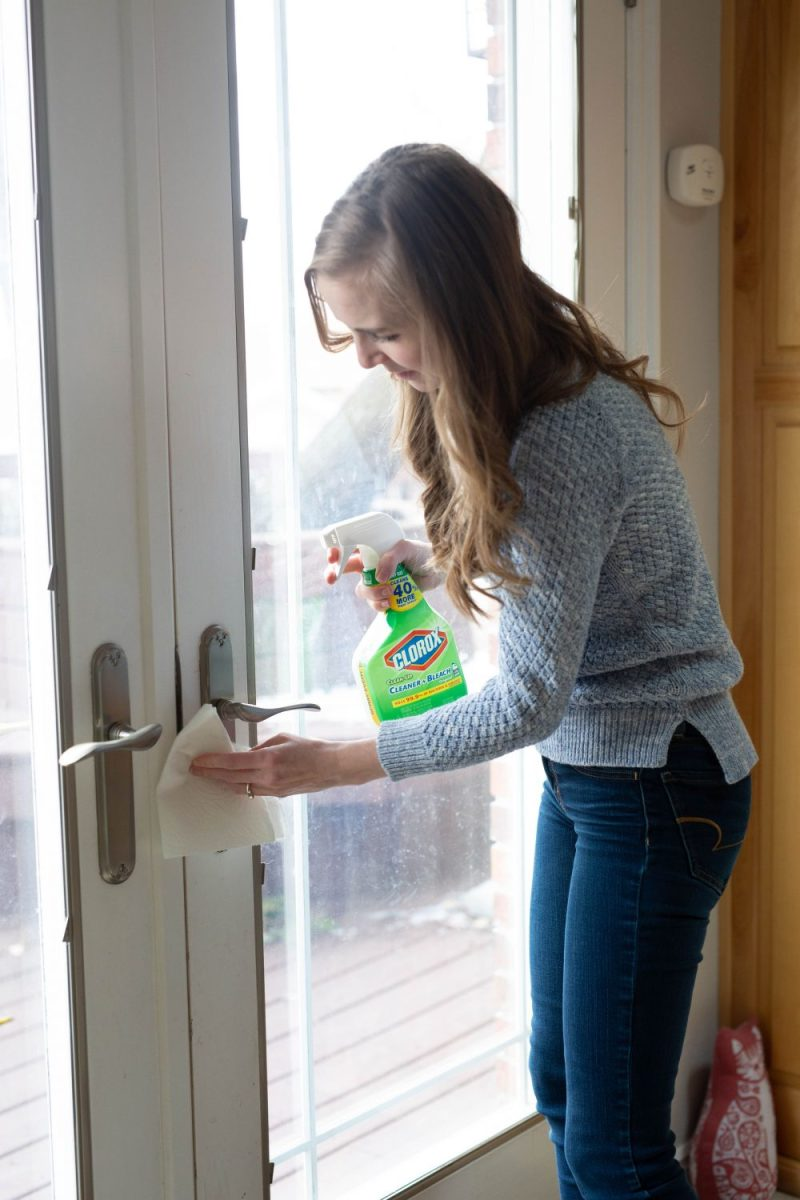 Get rid of the germs on door knobs, handles, and light switch plates.