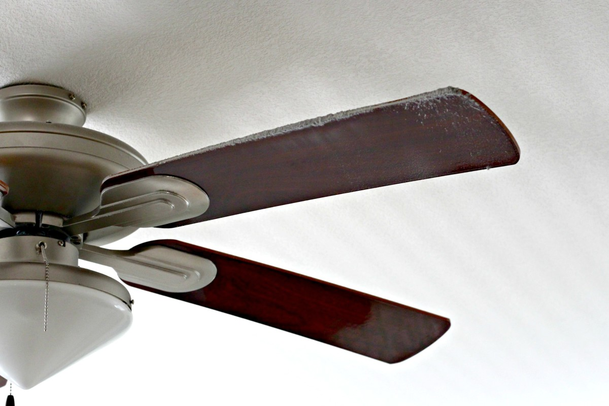 Clean the fan blades at least every 6 months.