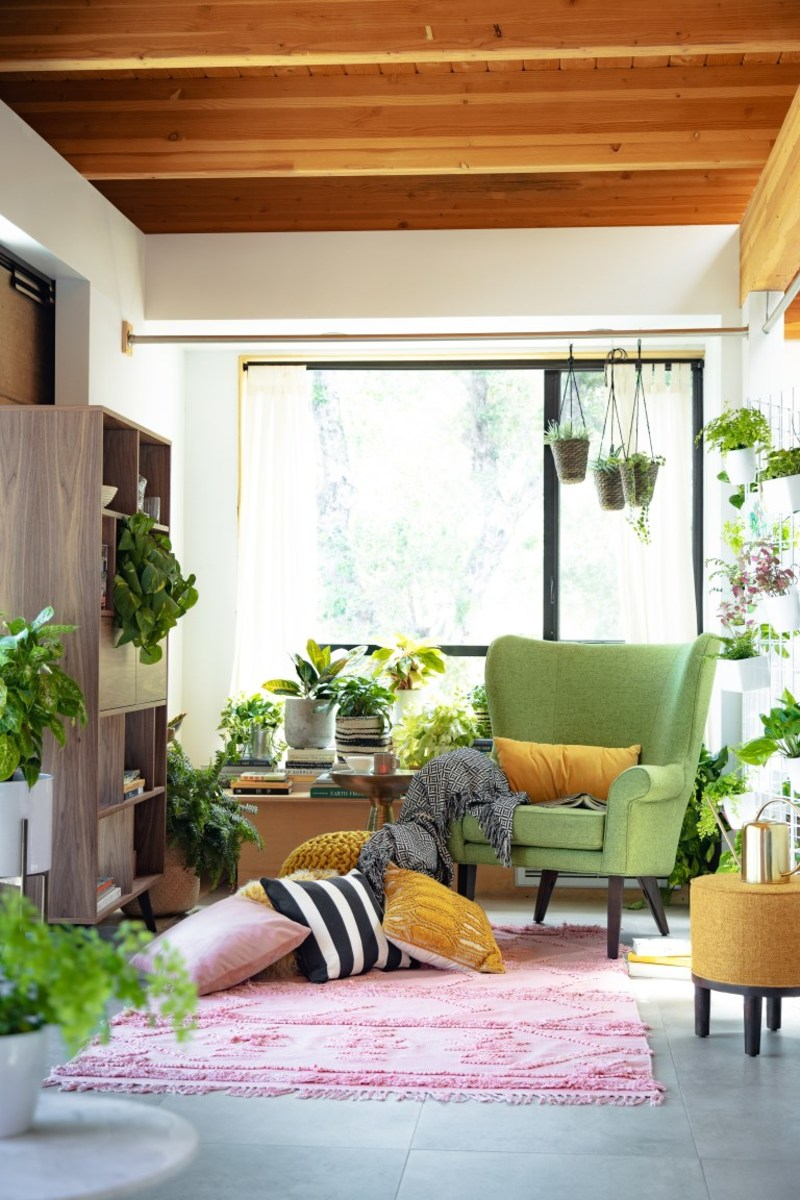 Greenery adds life and color in the living room.