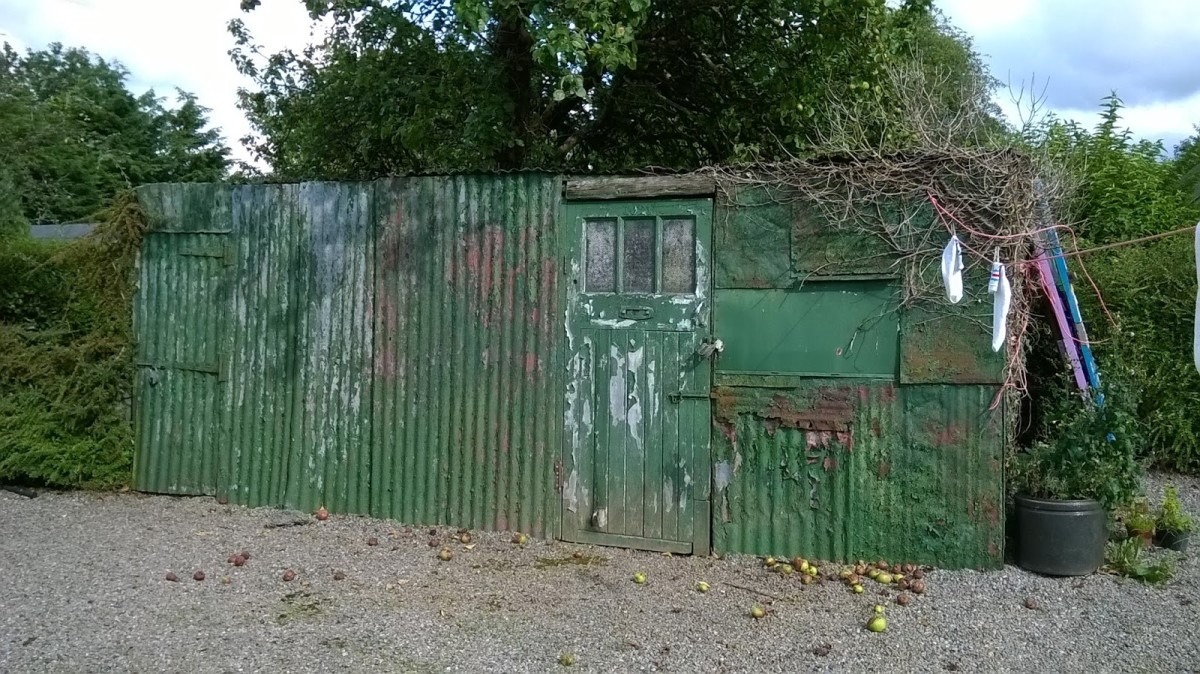 Old, corrugated iron shed, in need of replacement.
