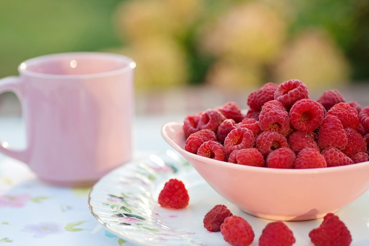 How to Grow Raspberries, a Native Plant
