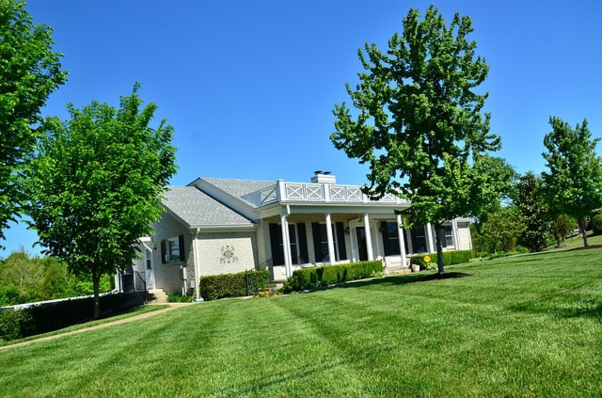 simple-lawn-maintenance-tips-for-success