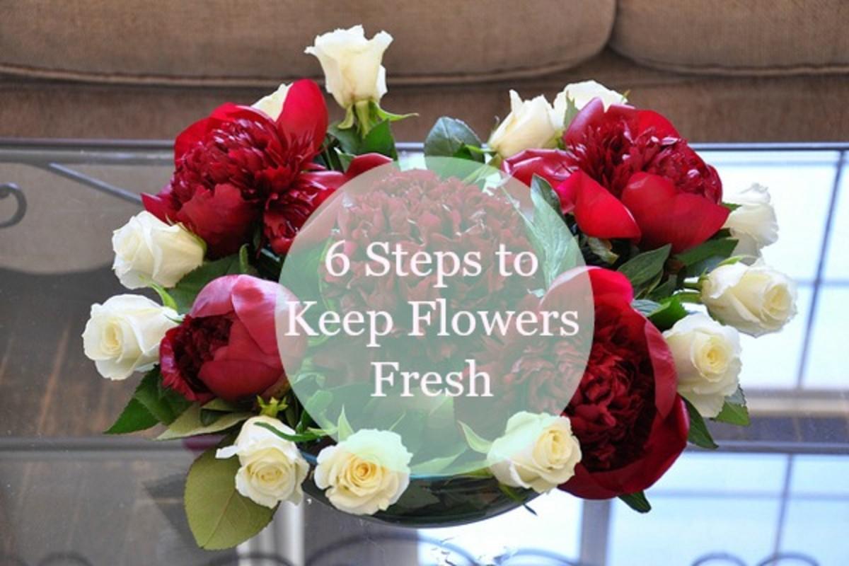 6 Steps to Keep Flowers Fresh Longer