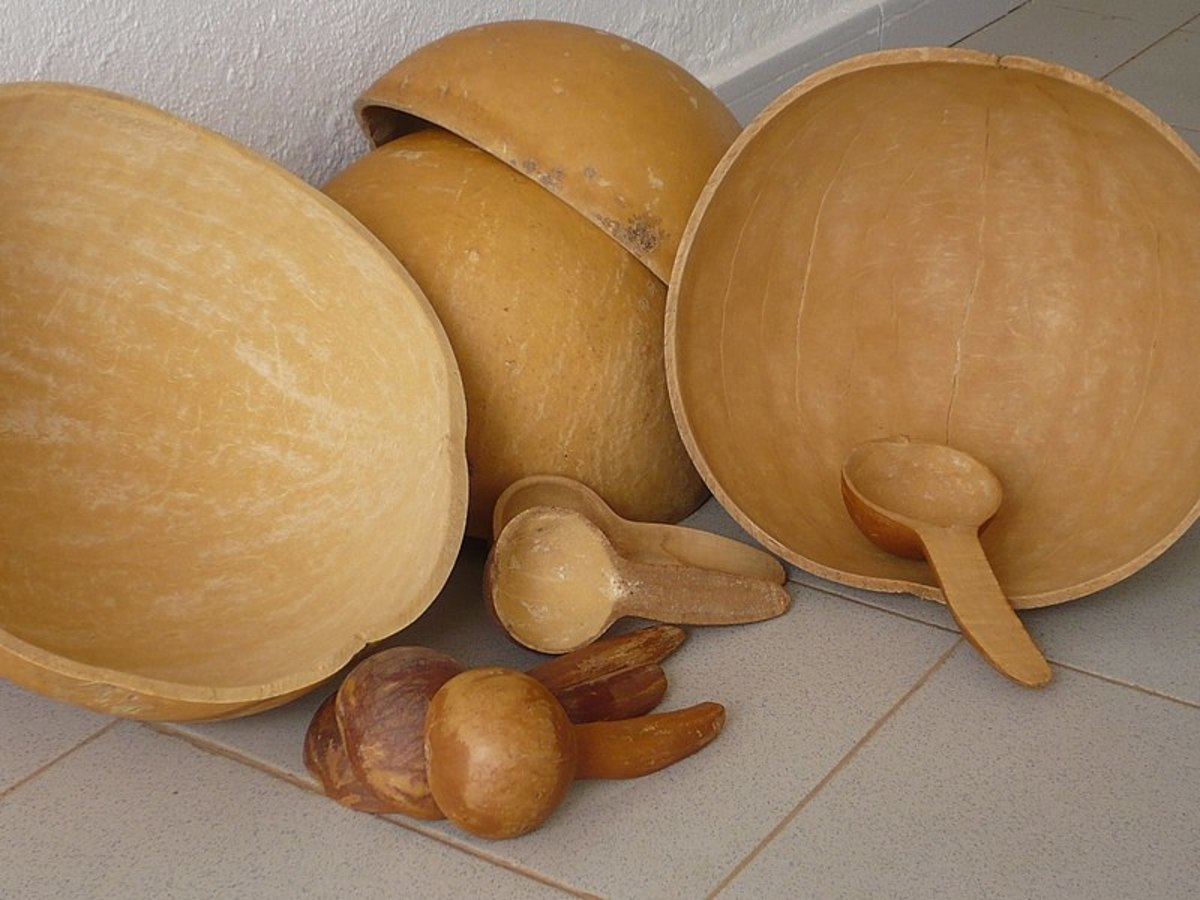 After they are dried, birdhouse gourds can be used for utensils and bowls.