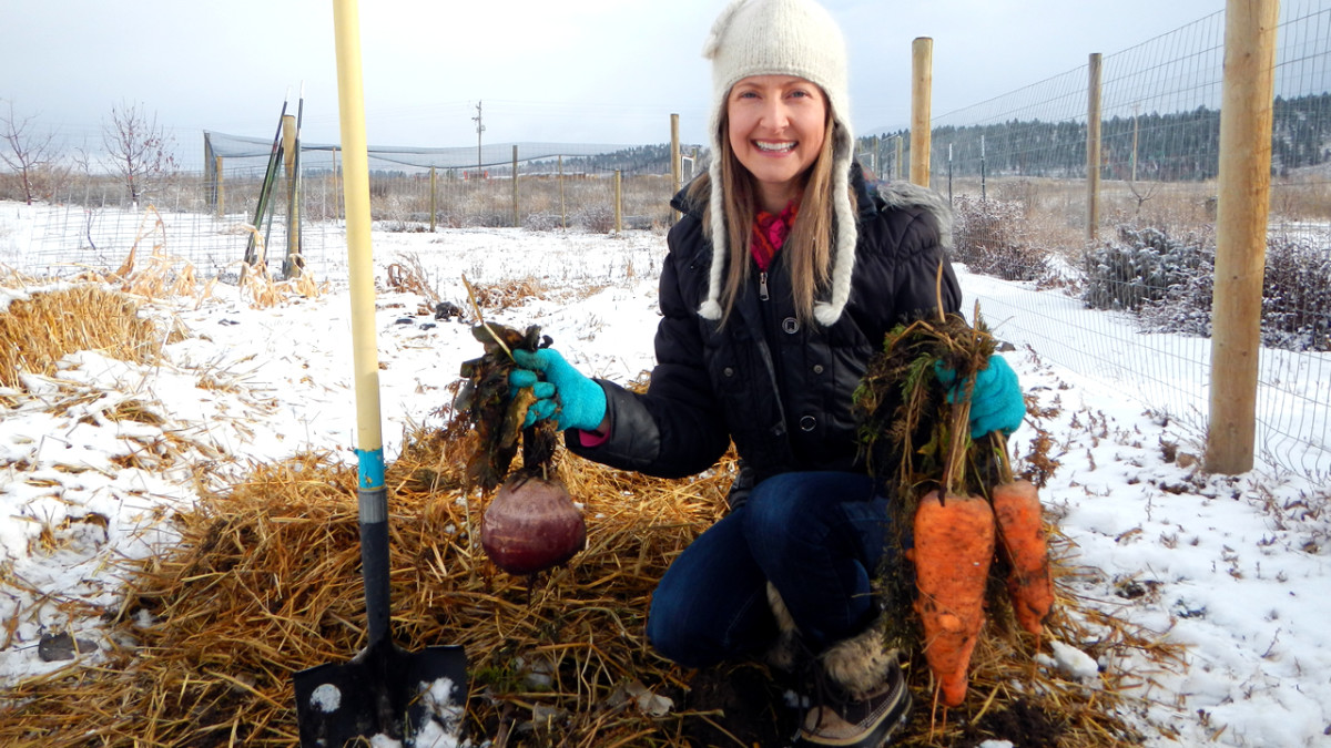 How to Overwinter Garden Carrots Without Refrigeration or Sand Buckets