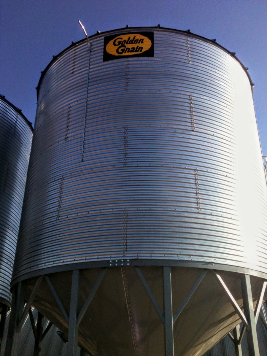 This bin is 18 feet tall (walls only), and 18 feet in diameter. It holds over 4,000 bushels of wheat, or more than 100 tons.