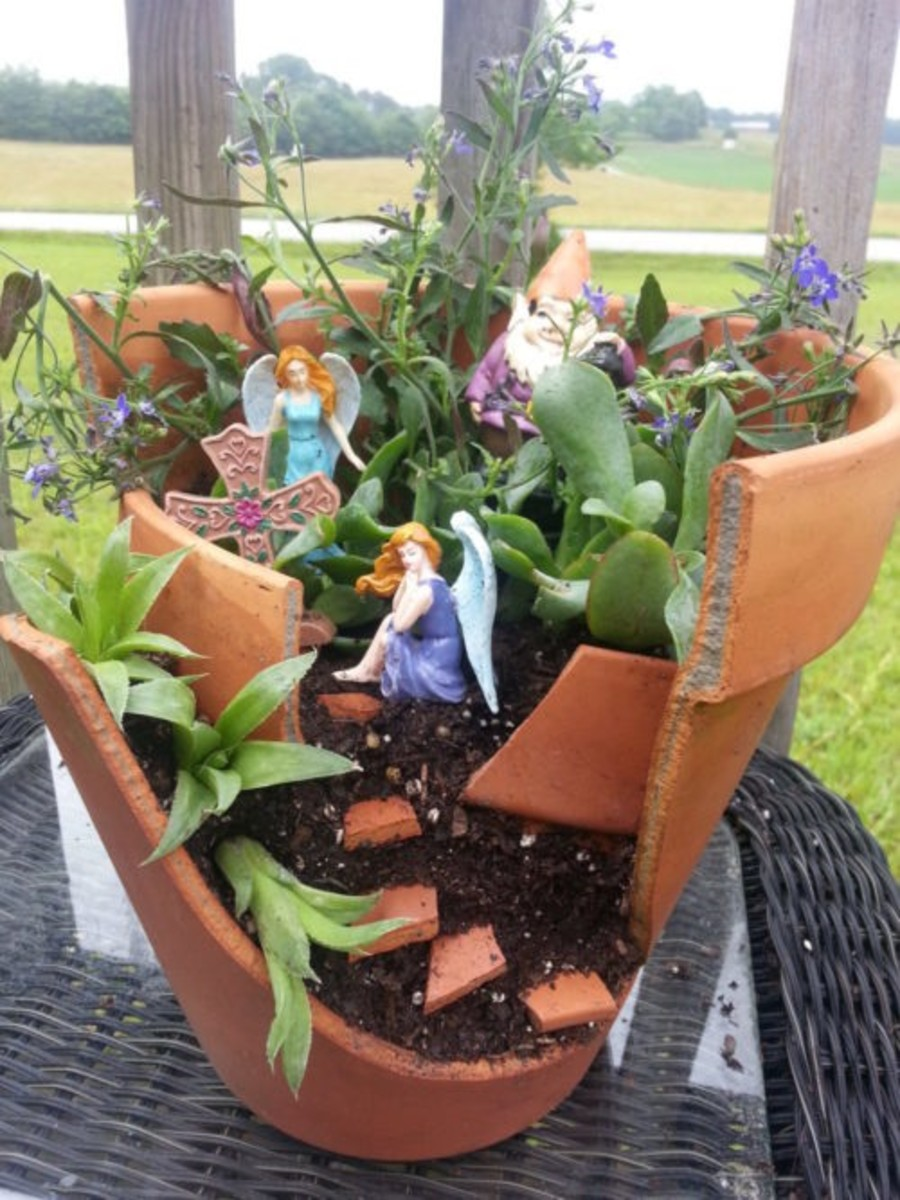 This article will show you how to make your own fairy garden out of a broken pot.