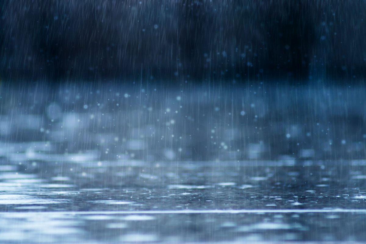 Everything You Need to Know About Trapping Rainwater