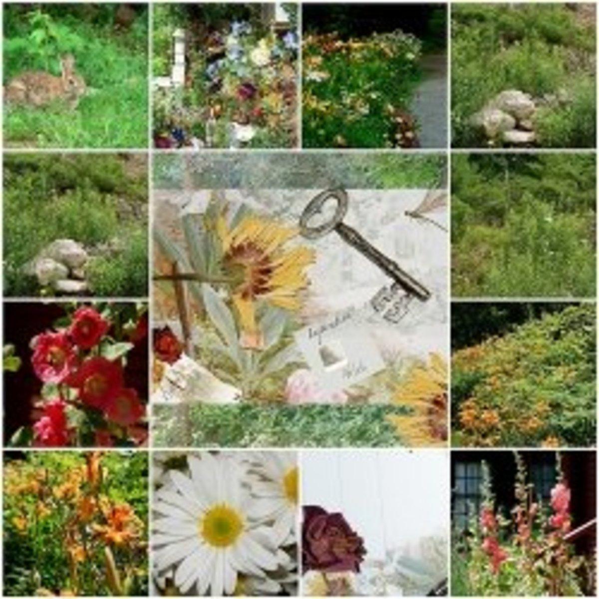 Teaching Critical Literacy with The Secret Garden