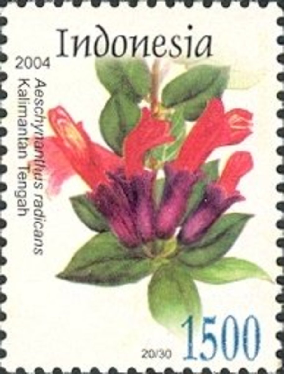 The lipstick plant is featured on an Indonesian stamp.