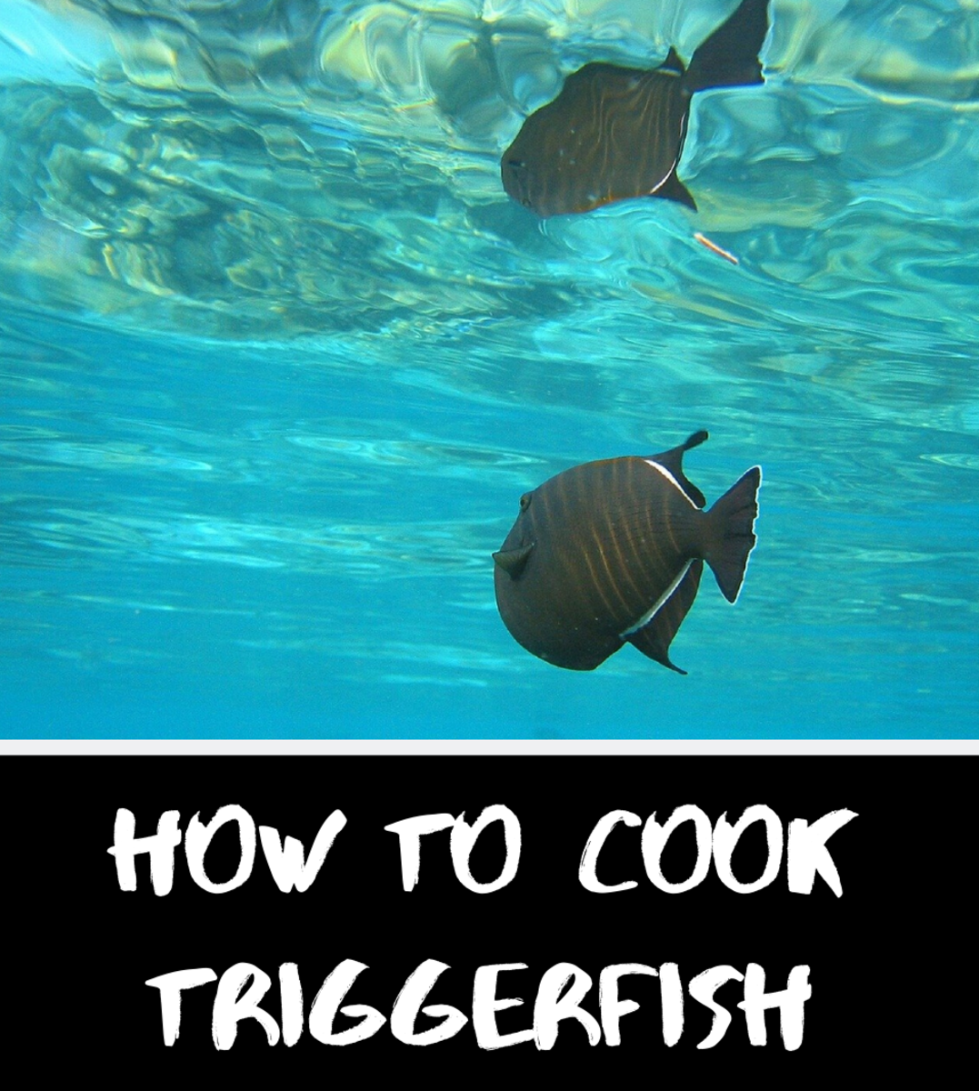 How to Cook Triggerfish on the Grill or in the Oven